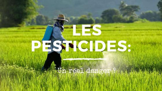Les pesticides un réel danger